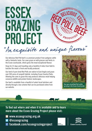 Essex Grazing Project - A5 flyer