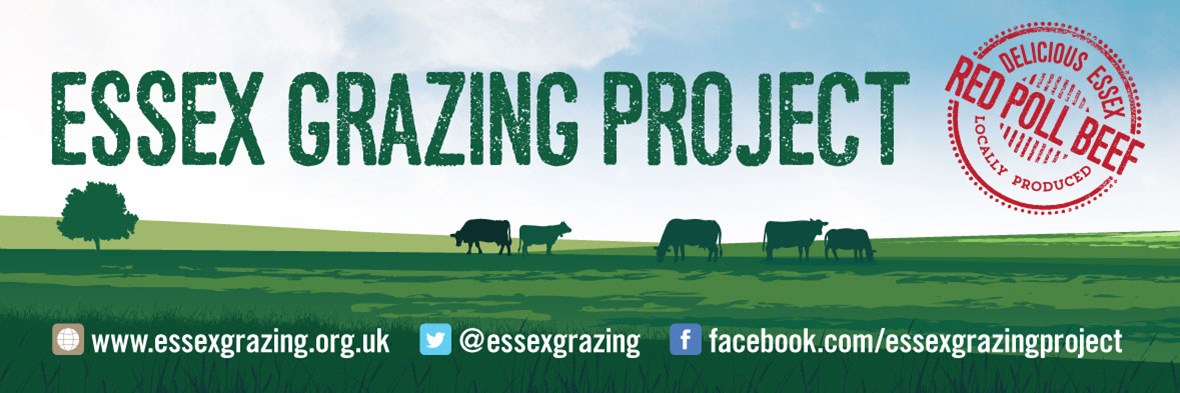 Essex Grazing Project - banner
